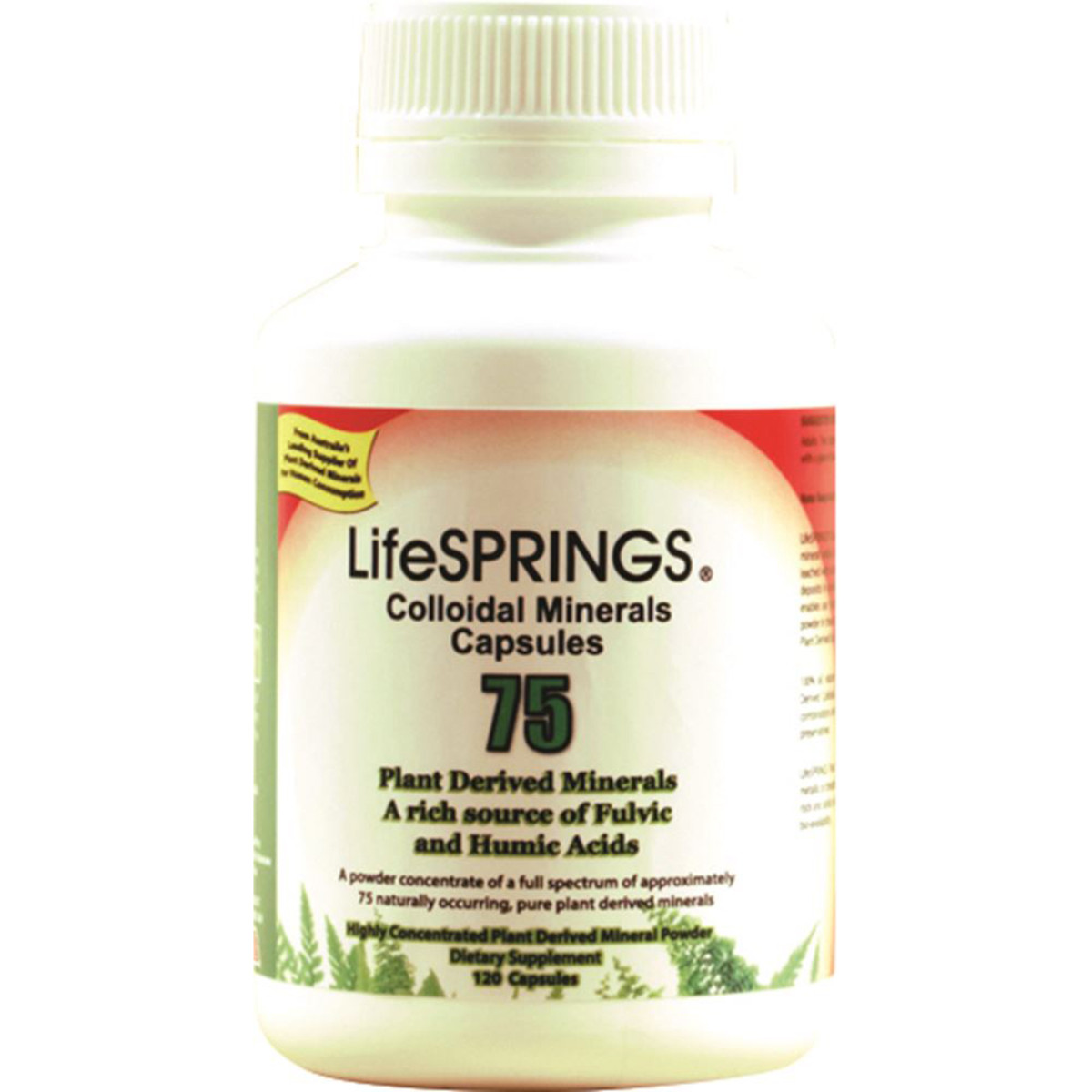 LIFESPRINGS COLLOIDAL MINERALS 120C